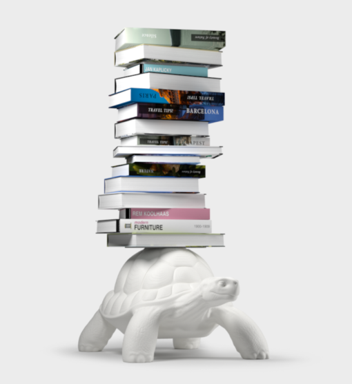 Libreria Turtle Carry